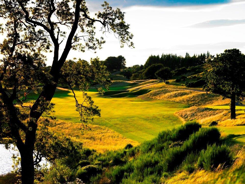 Golfgrün mit Bäumen und Teich auf dem Gleneagles King´s Golfkurs in der Nähe von St .Andrews, Schottland