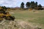 Fairway Moniefieth golf